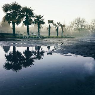 matin brumeux post pluie nocturne