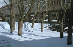 Academic Quadrangle Snow (jvde) Tags: 3570mmf3345nikkor burnaby coolscan film fujicolor nikonfe sfu
