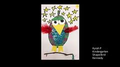 kennedy-shape-bird-kyrah