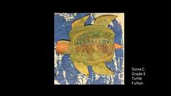 fulton-turtle-sione