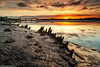Wigg Islamd (6 of 10) (andyyoung37) Tags: merseyflatbargewrecks runcorn runcornbridge uk wiggisland cheshire rivermersey sunset england unitedkingdom gb