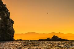 Le coucher en montagne (Bouhsina Photography) Tags: montagne sunset bouhsina bouhsinaphotography canon 7dii ef2470 été 2016 ton orange oiseau