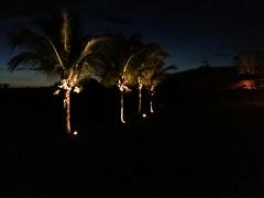 IMG-20151118-WA0047 (alaluxluz) Tags: iluminaçãosustentável projetosluminotécnicos projeção3d equipamentosdeiluminação iluminaçãoresidencial iluminaçãocomercial iluminaçãodejardim iluminaçãosubaquática iluminaçãocênica iluminaçãoteatral iluminaçãodeteatro iluminaçãodepaisagismo lustres lustresdecristal pendentes plafons arandelas abajures colunas apliques embutidos embutidosdesolo embutidosdeparede alabastros luminárias lumináriasdeemergência filtros gelatinas difusores fresnel fresnéis gobos lentes aletas defletoresdeluz acessóriosdeiluminação spots trilhos balizadores refletores projetores postes tartarugas fincosdejardim espetosdejardim cúpulas canoplas vidros globos cristais strobos movingheads lâmpadas lâmpadasespeciais lâmpadasdexenonresidencial lâmpadasdecarbono lâmpadasdegrafeno máquinasdefumaça fitasadesivas led painéisdeled oled fitasled fibraótica automação dimmers controladoresdeluz decoração designdeiluminação lightingdesign lightingfixtures decorativelighting lightingpendants alalux