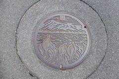 Kouriyama manhole (Stop carbon pollution) Tags: japan 日本 honshuu 本州 touhoku 東北 fukushimaken 福島県