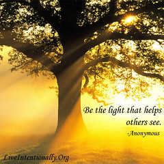 quote-liveintentionally-be-the-light-that-helps (pdstein007) Tags: quote inspiration inspirationalquote carpediem liveintentionally