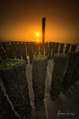 Details At Sunset (Alec Lux) Tags: nieuwesluis beach breakwater coast coastline groyne landscape landscapephotography nature naturephotography netherlands ocean pattern sand sea seascape seascapephotography sunlight sunset sunsetphotography texture breskens zeeland nl