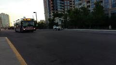 TTC #7348 (Crescent Transit 54) Tags: ttc toronto transit commission buses
