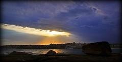 DSC_0543 When the sky shines (Rodolfo Frino) Tags: sky cielo ciel clouds beach bondi rocks birds gulls seagulls opening rays bright sunshine vivid sunlight