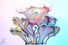 Liquid art - 29042017 (Hélène Caillaud) Tags: art artwork macro waterdrop wasser water waterdroplets eau helenecaillaud drop dropart tropfen stopshot waterdropart waterart photography liquidart goutte gouttes paint peinture liquid liquidsculpture liquiddrop speed splash splashart drops droplet dropondrop fluid fluide highspeedphotography highspeed hautevitesse liquidscupture macroart motion mouvement wassertropfen