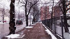 Oulu_03 (elena_n) Tags: north spring oulu finland snowfall