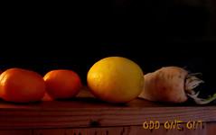 Copycatting (amy's antics) Tags: wah wearehere orange lemon parsnip fruit veg xavier