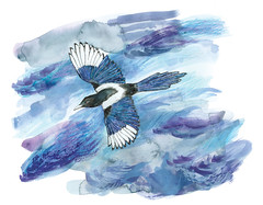 Magpie (Sharon Farrow) Tags: bird birds magpie illustration illustrator nature flying clouds markmaking texture blue purple wings sky sharonfarrow mixedmedia paint pencil pen ink crayon gouache flight