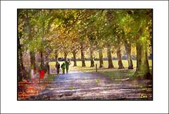 CALDERSTONES PARK (DEREK HYAMSON . OVER 5 AND A HALF MILLION) Tags: hdr calderstones park liverpool impression