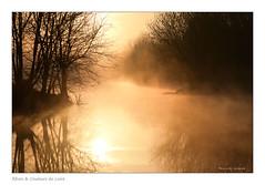 Brume de loire (Bruno-photos2013) Tags: loire brume bretagne reflets reflexion boire paysage paysageligérien paysdeloire landscape foggy