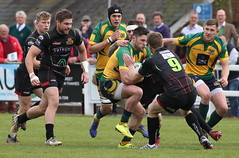 BW0Y2931 (Steve Karpa Photography) Tags: henleyhawks henley rugby rugbyunion game sport competition outdoorsport redruth