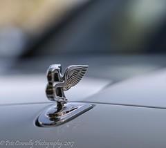 Bentley Hood Ornament (4 Pete Seek) Tags: caffeineandoctane caffeineandoctanecarshow carshow autoshow speedandstyle velocitytv exoticcars bentley hoodornament bentleyhoodornament samyang samyang135f2