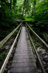 6666 (cleotalk) Tags: jessamine county ky kentucky gorge trail creek overstreet deer woods hiking