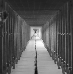 Walkway (bnbalance) Tags: yourbestblackandwhite bnw blackandwhite bridge walkway bw street depthoffield theunforgettablepictures