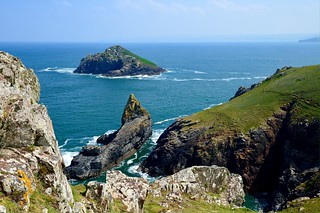 The Rumps and The Mouls