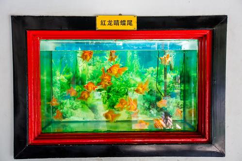 Peking_BasvanOort-11