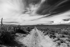 (el zopilote) Tags: 700 600 500 albuquerque newmexico westmesa landscape powerlines clouds canon eos 5dmarkii canonef24105mmf4lisusm canonites fullframe bw bn nb blancoynegro blackwhite noiretblanc digitalbw bndigital schwarzweiss monochrome 800