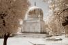 Quli Qutub Shah Tombs (tirumala nalla) Tags: hyderabad india tombs quli qutub infrared architecture islamic
