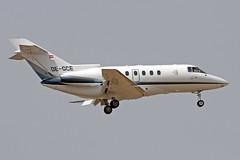 OE-GCE LMML 13-05-2017 (Burmarrad (Mark) Camenzuli Thank you for the 21.8) Tags: airline goldeckflug aircraft raytheon hawker 800xp registration oegce cn 258536 lmml 13052017