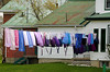 Hung Out to Dry (Poocher7) Tags: laundry drying hung out dry hungouttodry wind farmhouse shirts dresses aprons socks underwear towels wheelbarrel country rural ruralontario mennonites plainpeople religious simplelife quiet peaceful countryliving hawkesville ontario canada purples blue pink homesewn clothespins tinroof