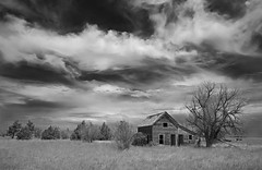 once was home = B&W version (eDDie_TK) Tags: weldcountyco weldcounty co colorado coloradoseasternplains homesteads abandoned clouds sky blackandwhite bw