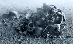 Mandelblob. (J.M.Fransen (jero 053) on/off) Tags: mandelbulb juliaset mandelbrot mud boil boiling bolivia jero053 jeroenfransen landscape nature vulcano geyser altiplano altitude desert water shapes chaos math photo
