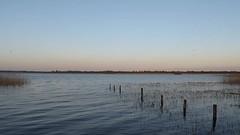 Dusk settling in (seikinsou) Tags: ireland westmeath spring loughennel lough ennel lake lilliput birdsong wavelet breeze dusk video