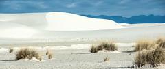 White Sands National Monument #  3 (keithhull) Tags: whitesands whitesandsnationalmonument alamogordo newmexico landscape silica unitedstates