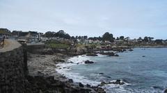 IMG_6156 (cheryl's pix) Tags: california pacificgrove pacificgroveca