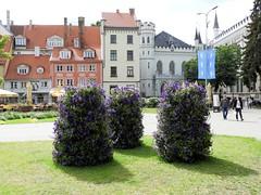 25 giu 2017 - Riga (8) (Thelonelyscout) Tags: riga lettonia latvia blackheads three brothers