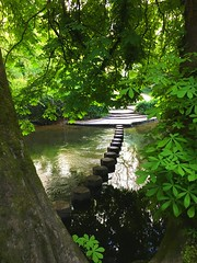 Stepping stones at Box Hill (amyellis-hall) Tags: boxhill water stones stepping