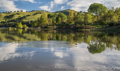 Del Valle Regional Park (katiewong511) Tags: delvalleregionalpark livermore sunrise reflection green rolling hill lake fishing trail spring trees