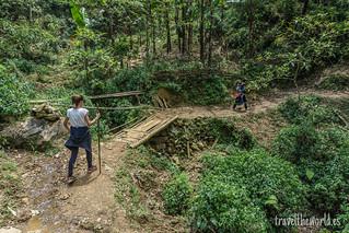 Puente trekking