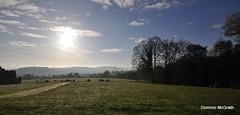 Kilmacurragh vista. (mcgrath.dominic) Tags: landscape botanicgardens kilmacurragh cowicklow