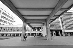 DSC_7401 (stadt + land) Tags: stadt dessau dessauröslau sachsen anhalt bilder sachseanhalt fotos sehenswürdigkeiten stadtportrait bundesland deutschland
