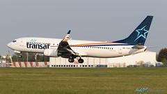 OK-TSO B737-8GQ Air Transat (kw2p) Tags: airtransat aircraft airlineoperator airport aviation b7378gq boeing egpf oktso b737 b737800 airline aeroplane airplane kw2p gaaec glasgowairport egpfgla scotland