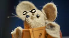 Where did I leave my eye-glasses? (Elisafox22 A bit ON/OFF at the moment!) Tags: elisafox22 sony nex7 50mmf28 macro carlzeiss touitmakroplanar lens hmm macromondays eyes mouse mousekin bookmark handmade felt sewing spectacles eyeglasses book reading elisaliddell©2017