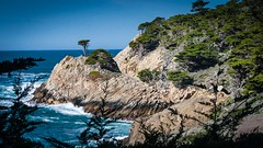 Long Cypress of Point Lobos (CDay DaytimeStudios w/1,000,000 views) Tags: californiasateparks carmelca coastline landscape montereyca ocean on pacificcoast pointlobos rocks seascape sky water