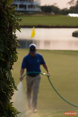 IMG_6665.jpg (AQUAAID) Tags: theplayers tpcsawgrass aquaaid