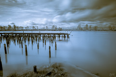Serenity (Žèę Ķ) Tags: britishcolumbia clouds historic landscape ocean seascape sky richmond water britanniashipyards shipyard longexposure calm silent serene reflection momochrome blackandwhite dock fraserriver smooth 10stop filter