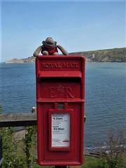 Munkeh waits for the post (Martellotower) Tags: munkeh runswick bay monkey tea bag post box red