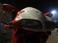 Duc in the rain (Rob de Hero) Tags: motorrad motorbike motorcycle bremen werkstattparty party bike ducati 998s 916 duc ulf penner ulfpenner