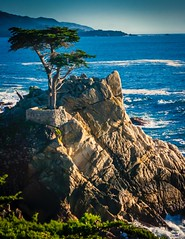 The Long Cypress of the 17 Mile Drive (4) (CDay DaytimeStudios w/1,000,000 views) Tags: 17miledrive californiasateparks carmelca coastline landscape longcypress montereybay montereyca ocean on pacificcoast rocks seascape sky water