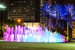Curtis Hixon Park. April 2017 (tarell_sallie) Tags: tampa florida hillsborough hillsboroughcounty night nighttime canon canont3i exposure longexposure timedexposure water fountain park recreation curtishixonpark 2017 april usa unitedstates america unitedstatesofamerica downtown city cityscape colors color catchy beautiful landscape urban copyright lightroom edit macbook