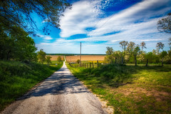 A Long And Straight Country Road (myoldpostcards) Tags: rural country landscape hills trees farmland atmosphere sky clouds gabbys road rd casscounty centralillinois illinois il myoldpostcards randall randy vonliski season spring canon eos 5dmarkiv hdr alongandstraightcountryroad