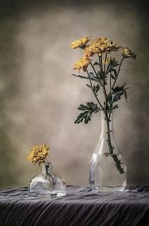 Flores y cristal  III